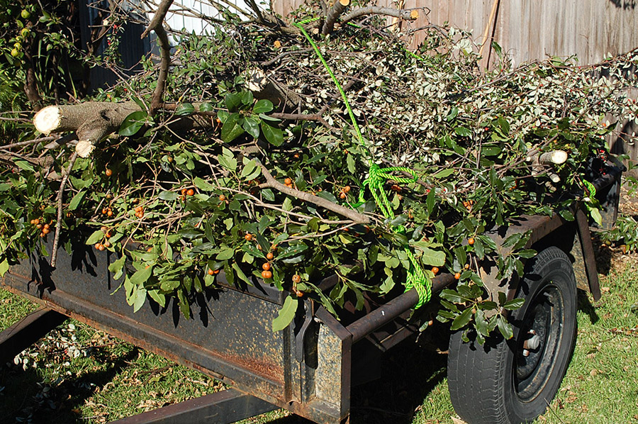 green waste removal sydney