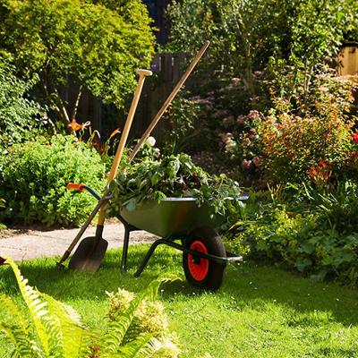 green waste removal sydney