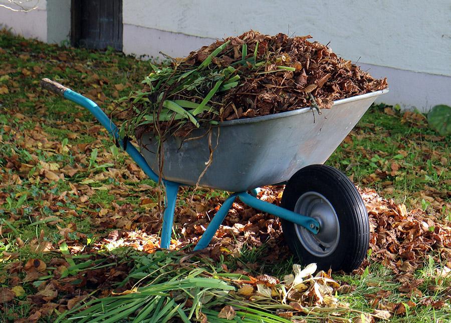 backyard rubbish removal