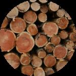 Timber Removal Sydney
